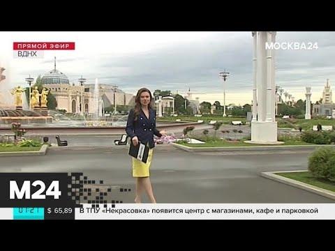 """""""Утро"""": прохладная погода ожидается в Москве 16 августа - Москва 24"""