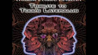 Lateralus a String Quartet tribute to Tool