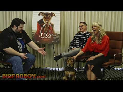 A DOG'S WAY HOME interview with screenwriters W. Bruce ...