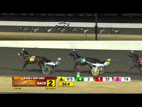 Meadowlands December 13, 2014 - Race 2 - Bettor Than You