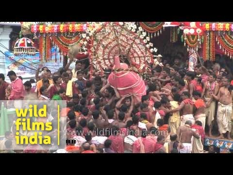 Journey of the chariots begins in Puri, Odisha