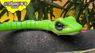 SNAKES vs. DINOSAURS - Invasion of Snake toys Skyheart kids action fight reptiles