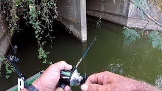 Fishing With The Turn N Burn! MUST SEE!!!