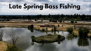 Late Spring Bass Fishing 2020 Success