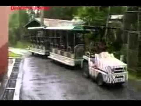 Lagu Nostalgia Cinta - khatijah ibrahim more than i can say from YouTube · Duration:  3 minutes 41 seconds