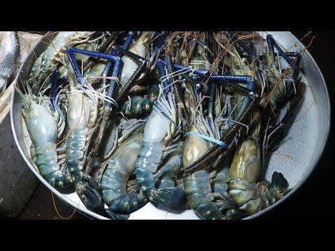Shrimp Fish Cutting | Shirmp Fish Clean And Cutting | Clean Prawns