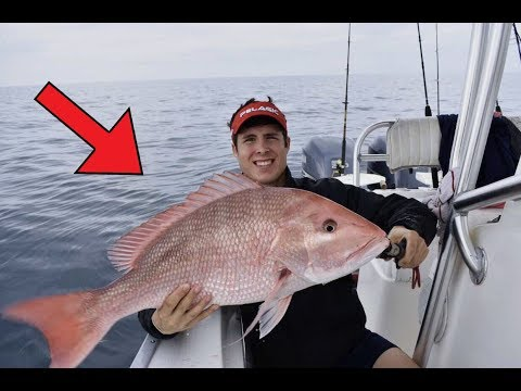 Florida Offshore Fishing - Catching Big Red Snapper (My Biggest)  - Shark Attacks Our Fish (2017)