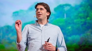 Tasso Azevedo: Hopeful lessons from the battle to save rainforests(, 2015-01-09T17:04:02.000Z)