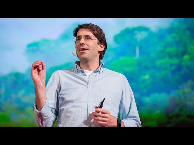 Tasso Azevedo: Hopeful lessons from the battle to save rainforests