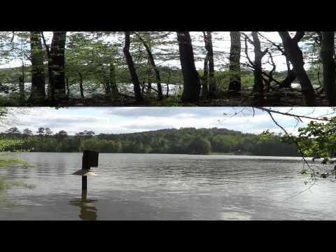 Blewett Falls Lake North Carolina Lot Tour - FOR SALE LAKE FRONT HOME SITE - 2013