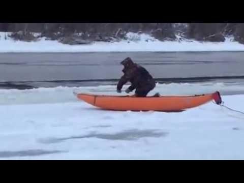 Спасатели вытащили из Оки косулю, застрявшую во льду