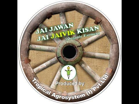 Tropical Agrosystem Documentary On Organic Farming - English