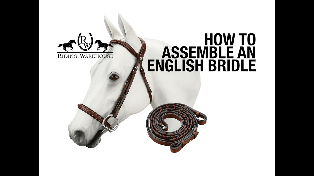 How To Assemble an English Bridle