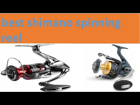 Best Shimano Spinning Reel