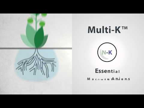 Multi-K™ - The Ultimate Source Of Potassium