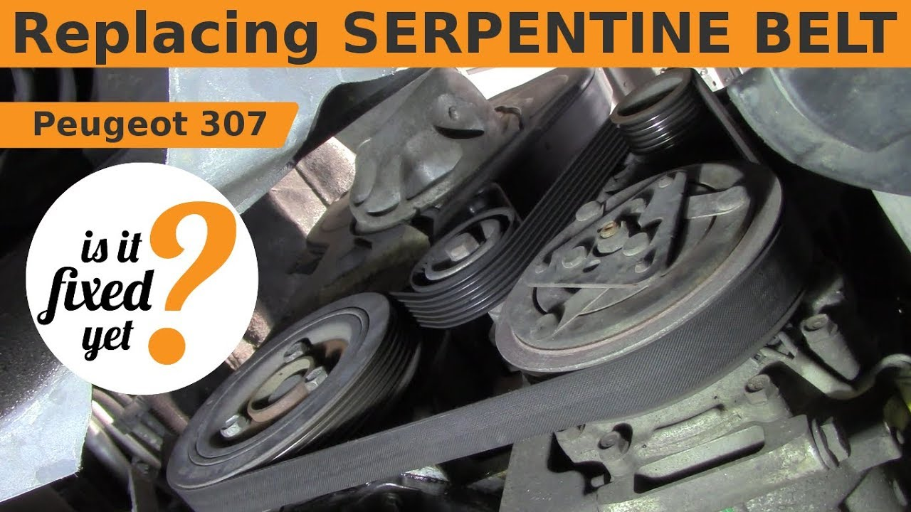Replacing Serpentine Belt Peugeot 307 Youtube