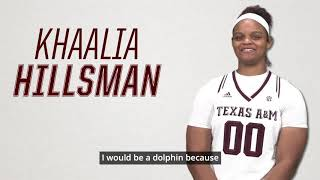 "2018 Women's Basketball Ask the Aggies | ""Animals"""