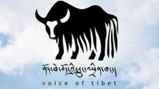 Sontsa Interview with Voice Of Tibet Radio