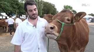 Journée de l'agriculture landaise à Hagetmau : éleveurs et grand public au rendez-vous