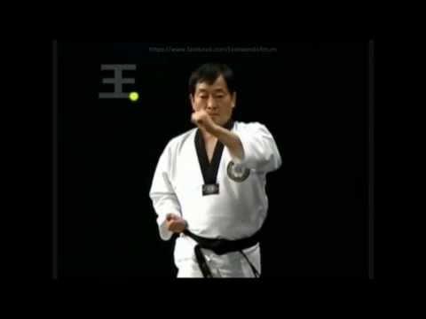 1. Il-Jang (Poomsae Taegeuk) Technical / ENGLISH SPEAK [HD]