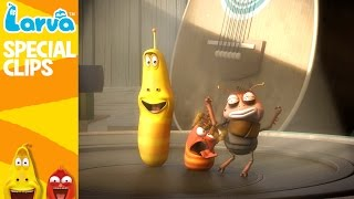 official dance - fun clips from animation larva