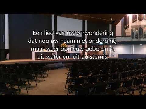 Lied 655 / Gezang 225, Zingt voor de Heer een nieuw gezang