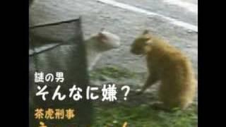 空耳:謎の男 vs 茶虎刑事 thumbnail
