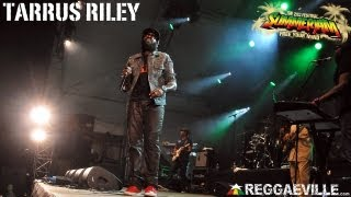 tarrus riley shes royal summerjam 752013