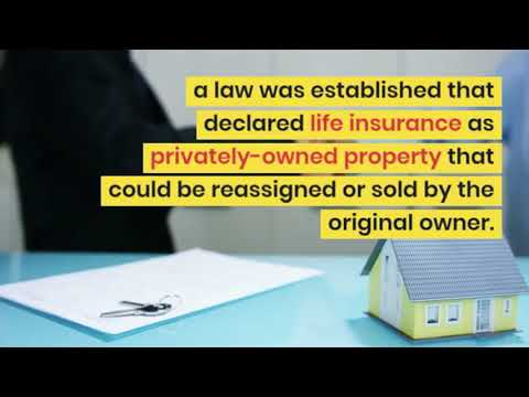 Life Settlements & Your Life Insurance Options