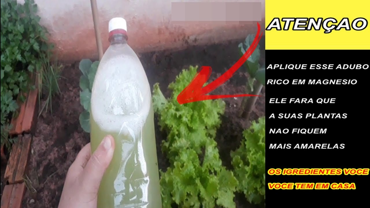 Adubo líquido rico magnésio e fósforo vai deixar a sua hortaliças lindas