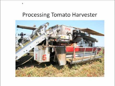 Lessons from the Sustainable Agriculture Farming Systems Project