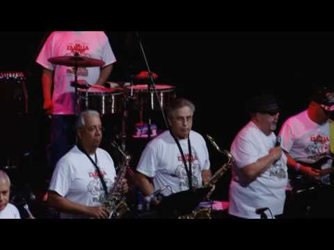 Paradize band 40th Anniversary pt2