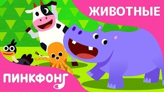 Танцы Животных | Песни про Динозавров | Пинкфонг Песни для Детей