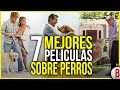TOP 7 MEJORES PELÍCULAS DE PERROS | PELÍCULAS DE PERROS QUE TE HARÁN LLORAR