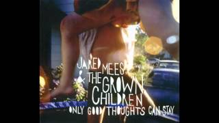 Jared Mees And The Grown Children - Shake (Original/HQ)