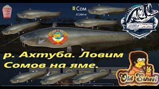 Русская Рыбалка 4. р. Ахтуба. Координаты для ловли Сома.
