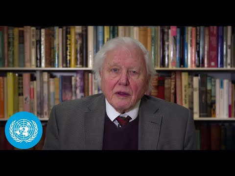 Sir David Attenborough on Climate and Security - Security Council Open VTC