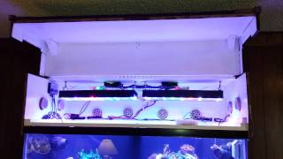 Linear Actuator Installed On 120g Reef Aquarium Canopy