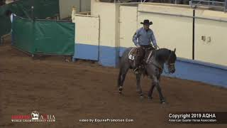 Metallic Malice - 2019 AQHA World Show - Open Senior Cowhorse Prelims - 435 - Finalist