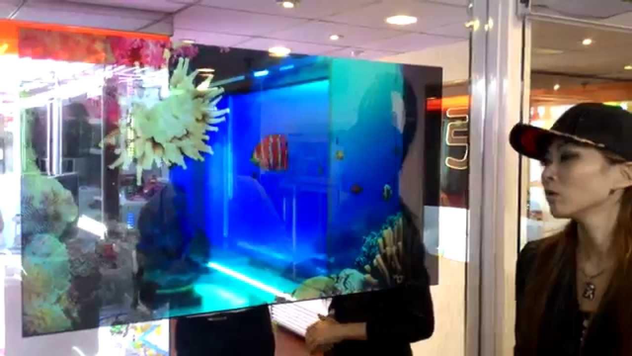 透明液晶モニタってもうあるんだね バーチャル水槽で泳ぐ@accolynx - YouTube