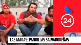 Las maras: Pandillas salvadoreñas