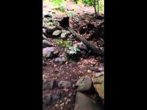 Blue Hill Hiking