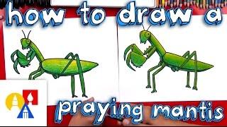 How To Draw A Praying Mantis