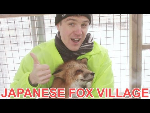 A Finnish Dude in a Japanese Fox Village - Japan Travel Vlog Ep 13