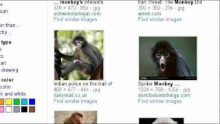 P7 Cam Jansen and the Mystery of the Monkey House