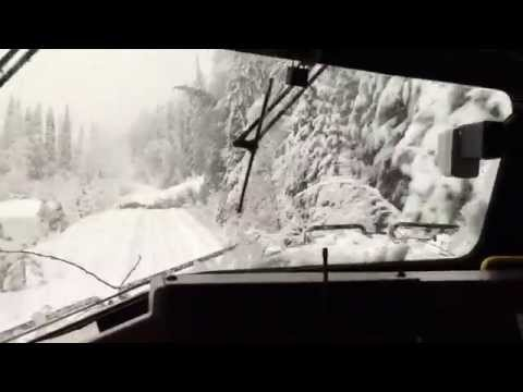 Thumbnail: Train plows through trees after snow storm!