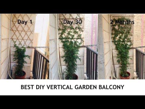 Best Diy Vertical Garden Balcony Youtube