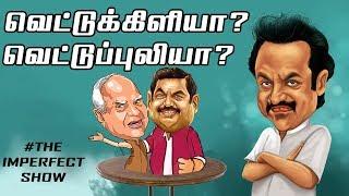 விஜயின் அரசியல் என்ட்ரி என்ன தவறு? SAC | தி இம்பர்ஃபெக்ட் ஷோ