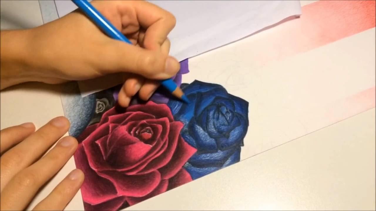 Cómo Dibujo Una Rosa Azul Con Lápices De Colores Youtube