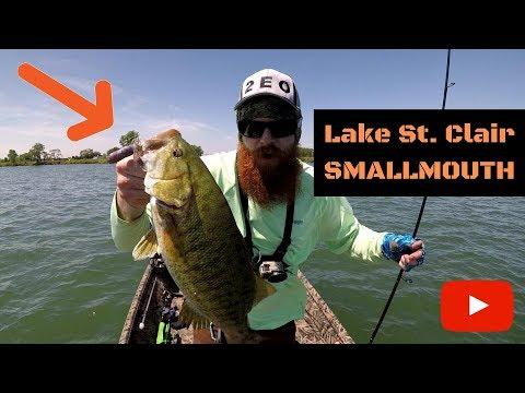 Huge Lake St. Clair Smallmouth! (NED RIGS/TUBES/SWIMBAITS) Part 4